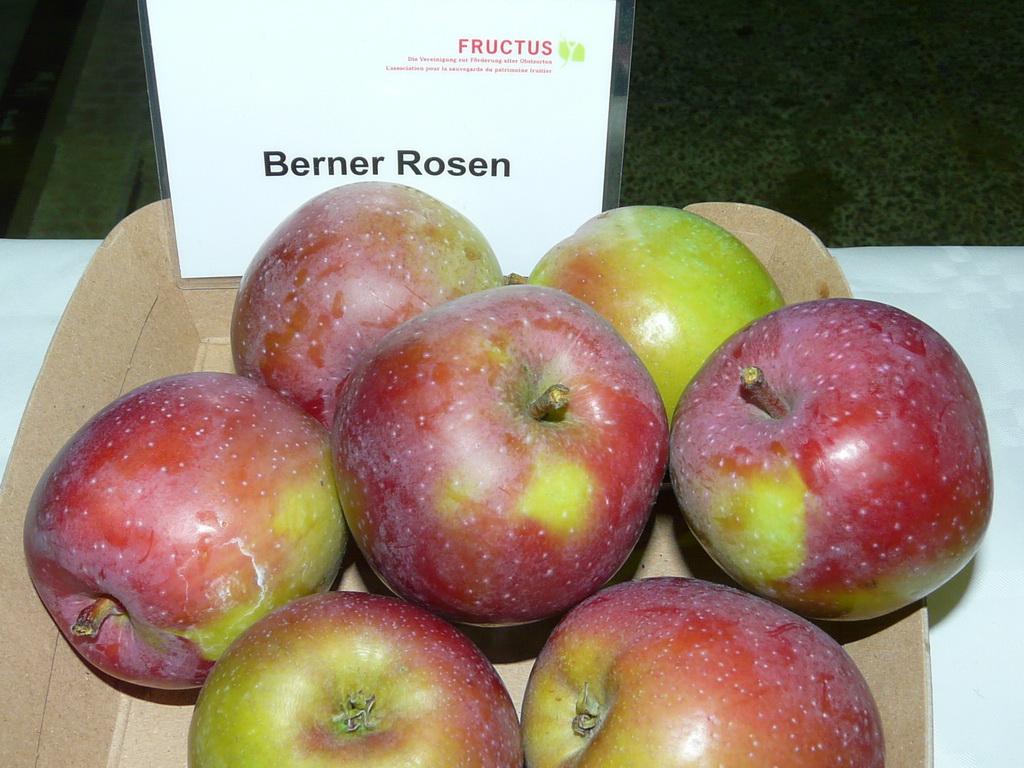 guide des pommes guide of apples berner rosenapfel rose de berne. Black Bedroom Furniture Sets. Home Design Ideas